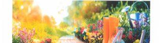 Concours des maisons fleuries et jardins potagers 2021